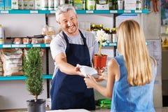 Человек как флорист в цветочном магазине стоковая фотография rf
