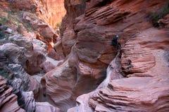 человек каньона Стоковое фото RF