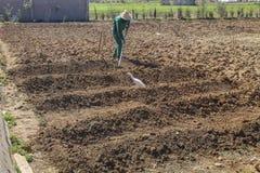 Человек культивируя сад с гребком руки Стоковые Фото