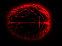 человек мозга бесплатная иллюстрация