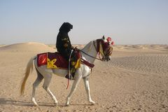 Человек на лошади в пустыне стоковое изображение rf