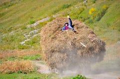 Человек на стоге сена Стоковое фото RF