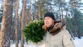 Человек носит ель в концепции Xmas леса зимы сток-видео