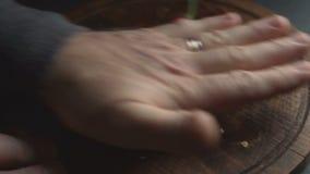 Человек освобождает нюх chili Мексиканское видео еды акции видеоматериалы