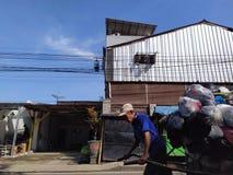 Человек отброса стоковая фотография rf