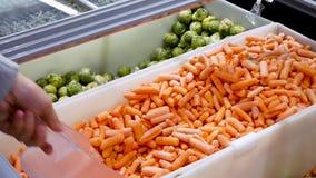 Человек покупает морковь в торговом центре молодой парень комплектует вверх замороженный выбор моркови замороженного конца вверх сток-видео