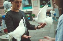 Человек предлагает белые голубей к туристам для фотосессии стоковое фото rf