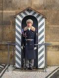 Человек предохранителя замка Праги Стоковые Фотографии RF