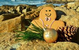 Человек пряника в рождестве смокинга на утесах рождеством игл и конуса сосны моря в июле стоковые изображения rf