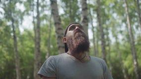 Человек путешественника рассматривает местность, восхищает природу леса сток-видео