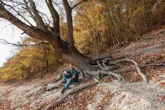 Человек сидит под опрокинутым деревом в осени стоковое фото rf