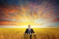 Человек сидя на поле стоковые фотографии rf