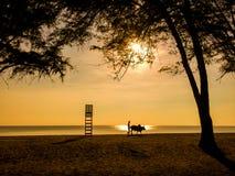 Человек силуэта с коровой идет на пляж стоковые фотографии rf