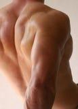 человек сильный Стоковая Фотография RF