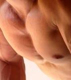 человек сильный Стоковые Изображения RF