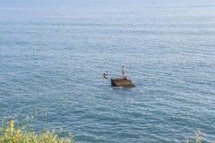 Человек скачет в голубое сальто назад моря стоковое фото rf
