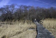 человек скрещивания моста малый Стоковое Изображение RF