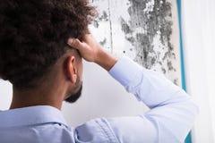Человек смотря прессформу на стене стоковое фото