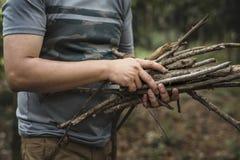 Человек собирая сухие хворостины для костра Стоковая Фотография