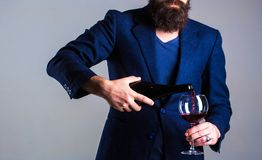 Человек сомелье, degustator, винодельня, мужской winemaker Бутылка, красный бокал Человек бороды, бородатый, сомелье, дегустация стоковое изображение