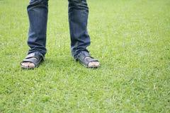 Человек стоя на зеленой траве Стоковое Изображение