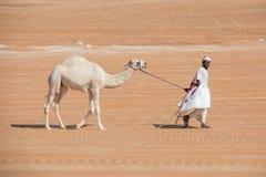 Человек с его верблюдом в пустыне Стоковые Фото
