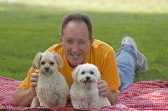 Человек с его собаками стоковые изображения rf