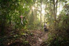 Человек с его собакой в тропических джунглях стоковые изображения rf