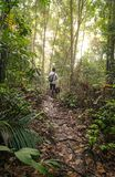 Человек с его собакой в тропических джунглях стоковое изображение rf