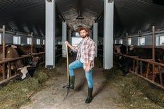 Человек с коровами вилы подавая Стоковое Фото
