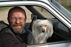 Человек с собакой в автомобиле стоковые изображения