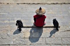 Человек с соломенной шляпой и 2 баклана сидят на банке реки стоковое изображение