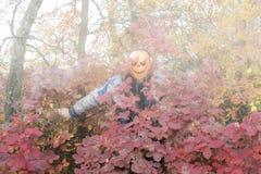 Человек с тыквой на его голове Сказание хеллоуина стоковая фотография