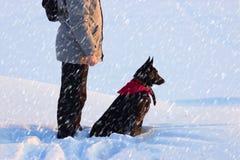Человек с черной собакой стоковое фото