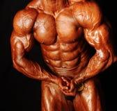 человек тела Стоковая Фотография RF