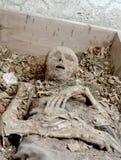 человек тела Стоковые Фотографии RF