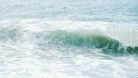 Человек турист ныряет в большую волну моря покрывает с головой, замедленное движение видеоматериал