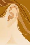 человек уха Стоковое фото RF