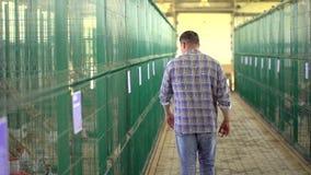 Человек фермера работая и проверяя качество в птицеферме птицы, дворе фермы индюка обрабатывающ землю, продукция птицы, птица акции видеоматериалы