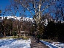 Человек jogging в парке зимы стоковая фотография