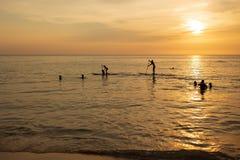 Человек paddleboarding на заходе солнца с собакой стоковое фото rf