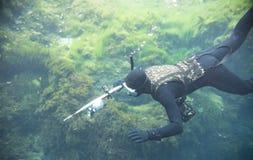 Человек Spearfishing с электрофонарем в глубокой плавания озера с камерой действия и подводным оружием стоковое изображение