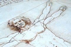 человек vitruvian Стоковые Изображения