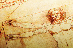 человек vitruvian Стоковое Фото
