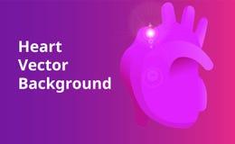 Человеческая предпосылка вектора сердца Стоковые Изображения