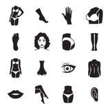 Человеческие значки частей тела Стоковая Фотография