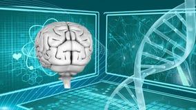 Человеческий мозг и ДНК иллюстрация штока