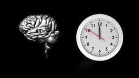 Человеческий мозг и часы бесплатная иллюстрация