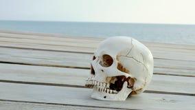 Человеческий череп на деревянной террасе с взглядом моря и неба r акции видеоматериалы