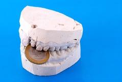 челюсти владением монетки Стоковая Фотография RF
